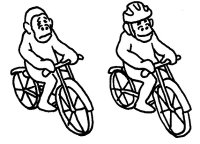 Monkey_on_bike_wearing_helmet