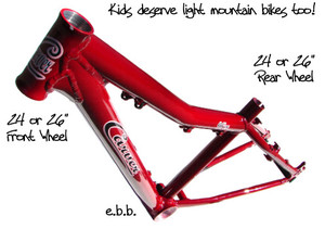 Carver_mini_kids_mountain_bike
